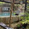 【タイの温泉地】ラノーン 山の中の温泉、おススメです!